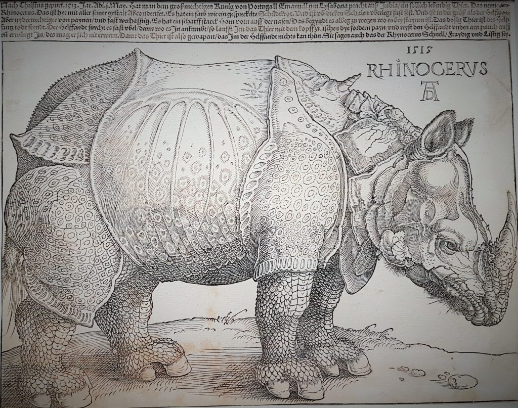 alte kunstvolle Zeichnung eines Rhinozeros