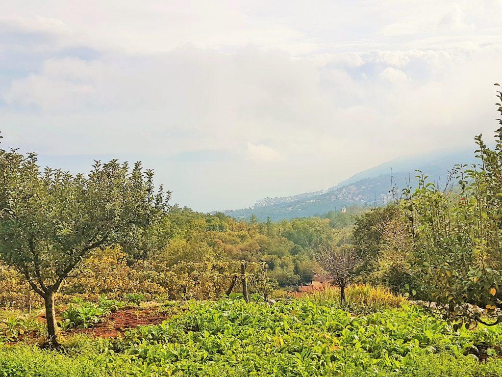 in den grünen Hügeln der Küstenlandschaft von Opatija