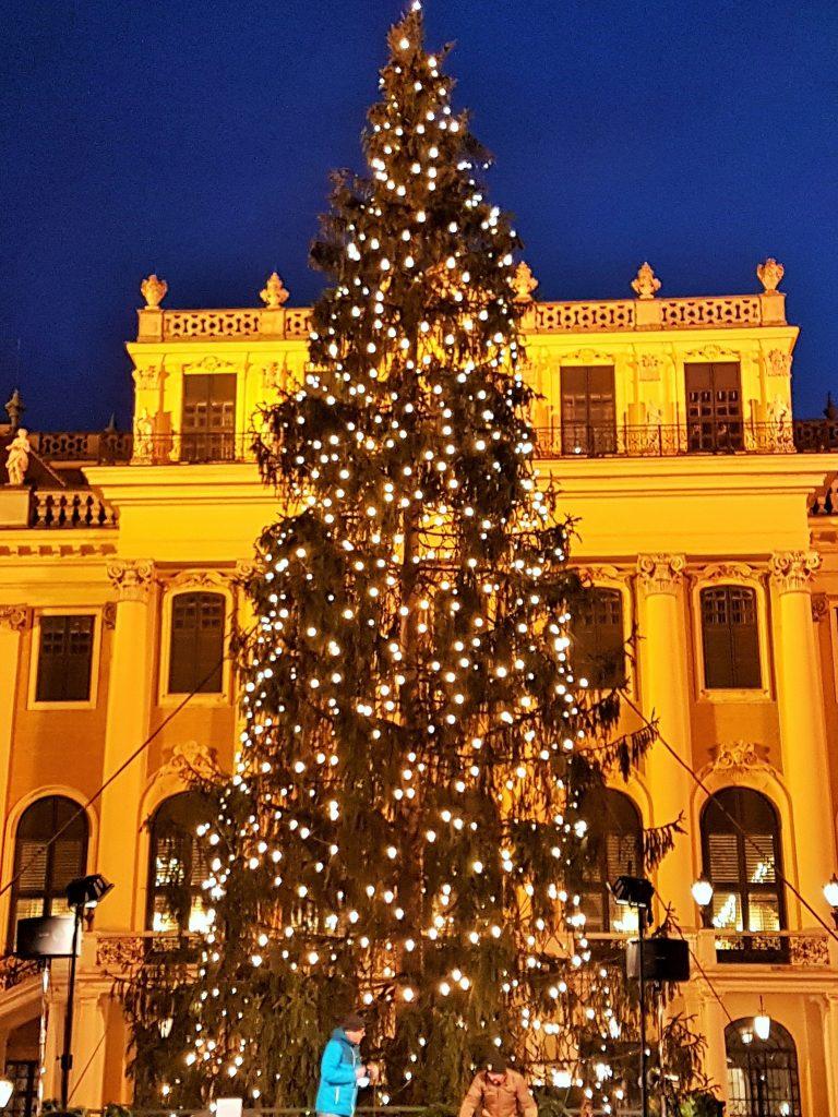 festlich beleuchteter Weihnachtsbaum vor dem Schloss Schönbrunn