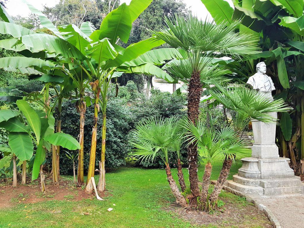 Park mit exotischen Pflanzen und einer Statue