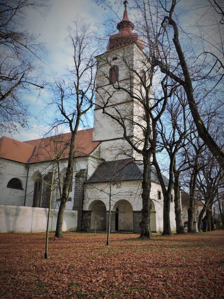 Kirche mit Turm hinter herbstlichen Bäumen