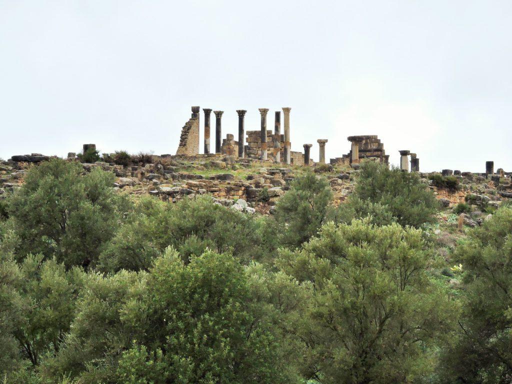 Ruinen von Tempeln auf Hügel mit Olivenbäumen