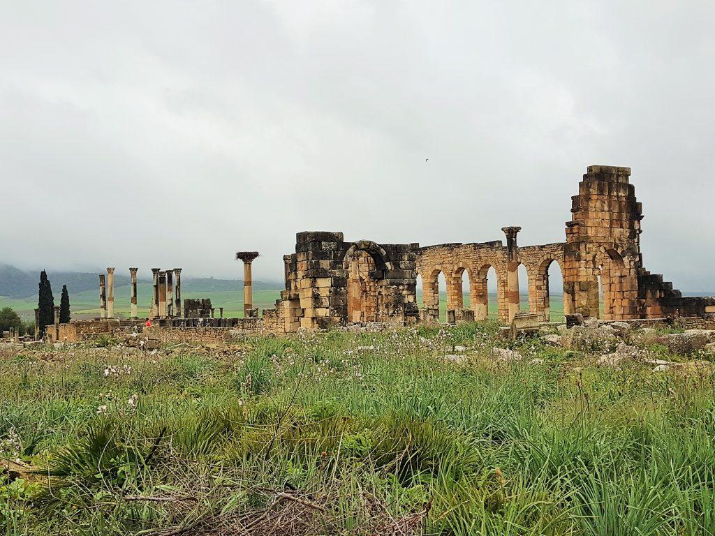 Tempel Ruine von Volubilis Marokko