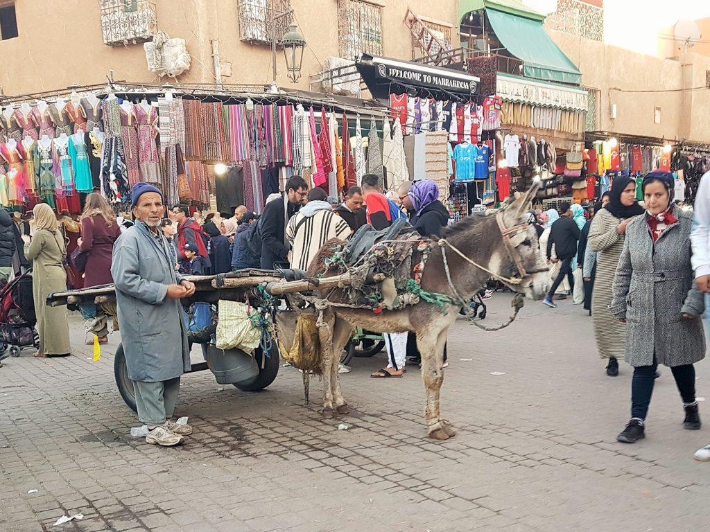 Marokkaner mit Eselskarren im Souk