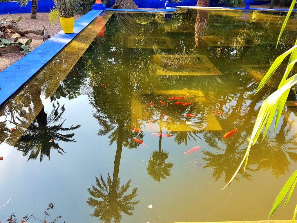 Wasserbecken in dem sich Palmen spiegeln im Garten Majorelle