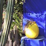 kobaltblaue Mauer davor gelbes Gefäß, Majorelle Garten Marrakesch