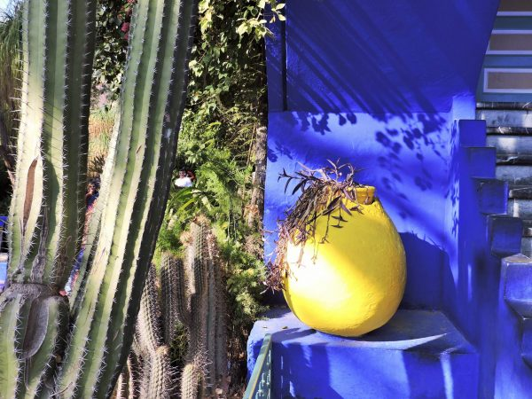 kobaltblaue Mauer davor gelbes Gefäß, Jardin Majorelle Marrakesch