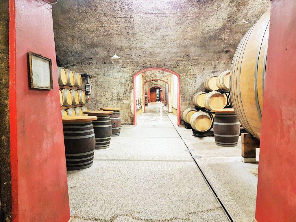 Weinkellerei in der Region Brda, Slowenien