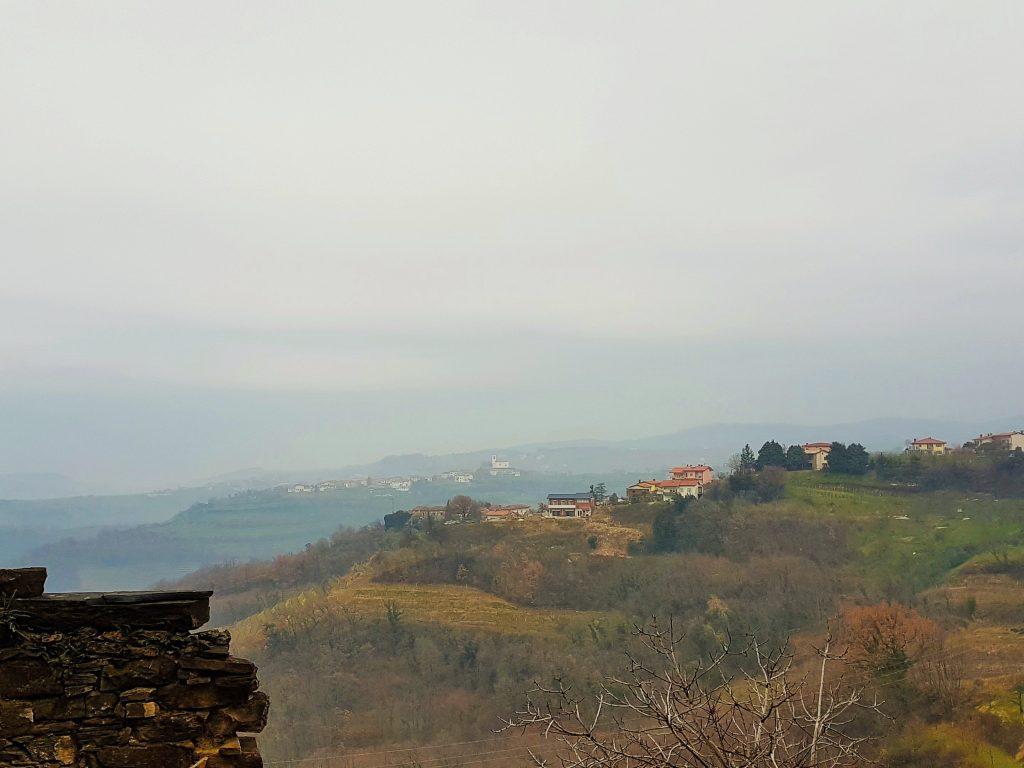 hügelige Wein Landschaft Wein Region Goriška Brda