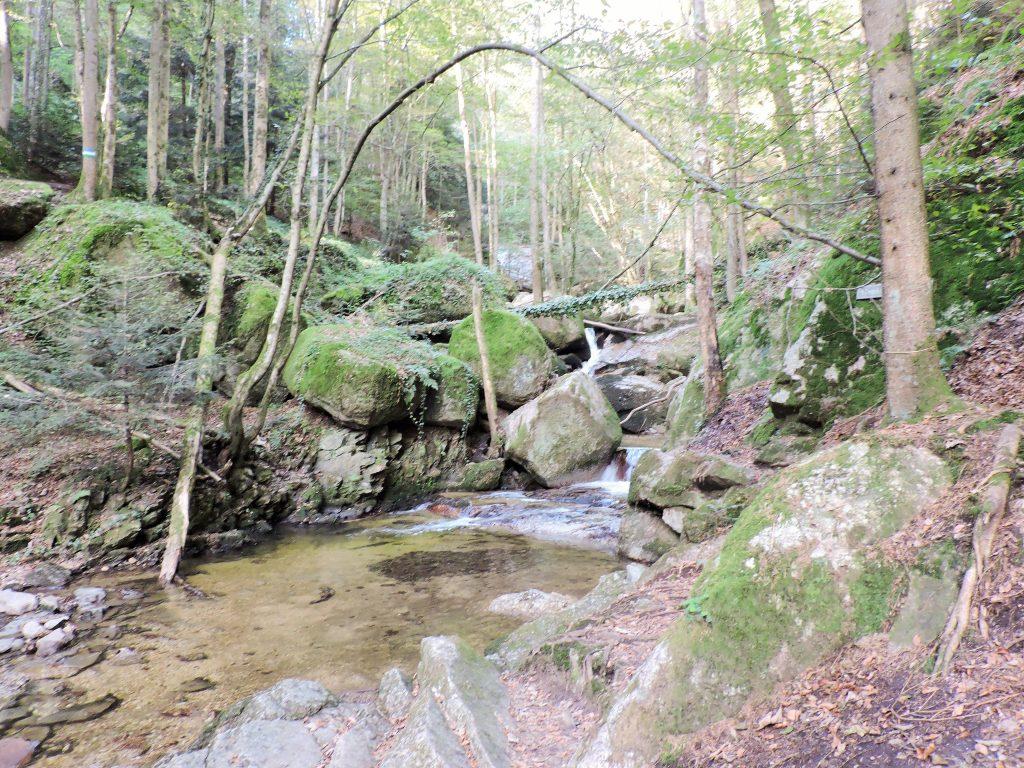 Kulturwanderwege u. Genuss in der Natur in Österreich