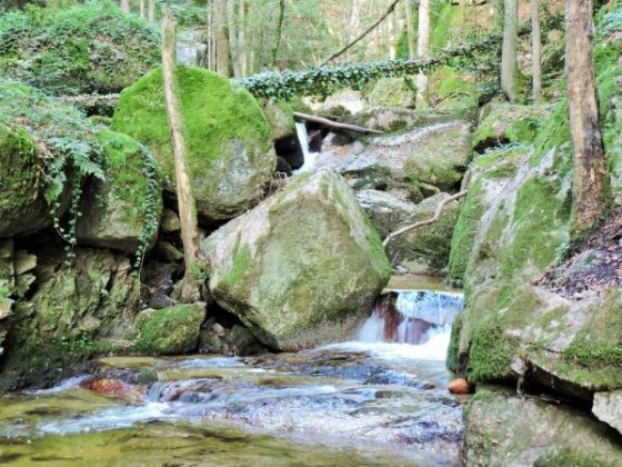 Bad Kreuzen Ausflugstipp Wolfsschlucht mit Bach und Riesenfelsen