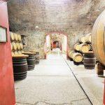 Slowenien Weingut, im Weinkeller Klet Brda