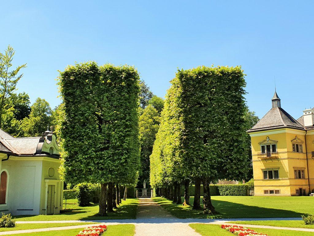 Hellbrunner Schlosspark Salzburg mit kleiner Allee