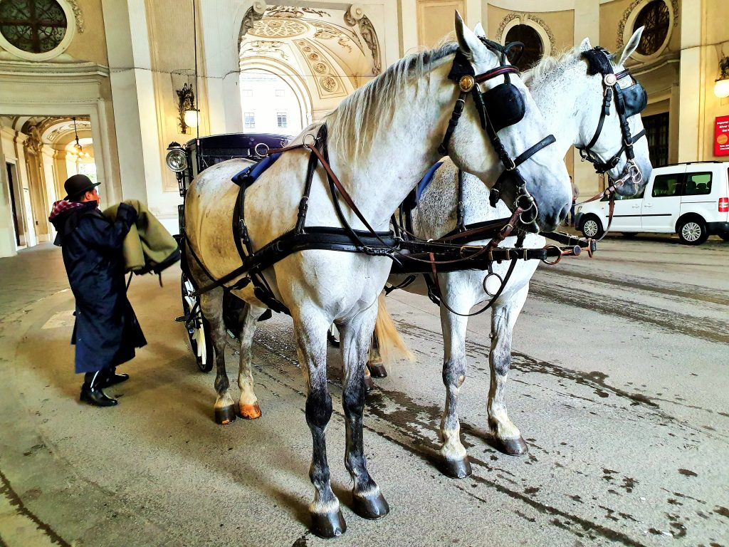 Ausflug mit Fiaker in Wien, Wiener Hofburg