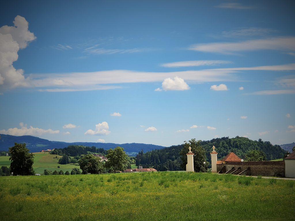 grüne Landschaft in der Steiermark