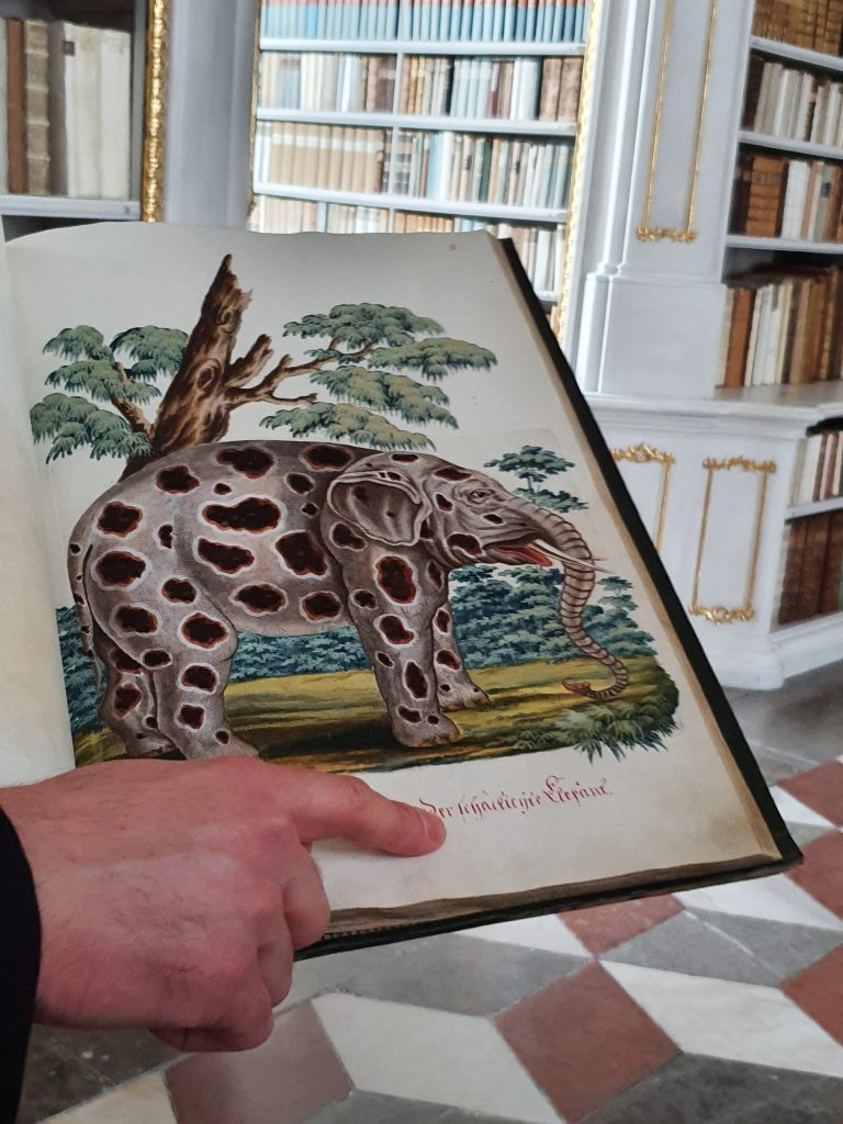 altes Naturkundebuch mit Abbildung eines gefleckten Elefanten