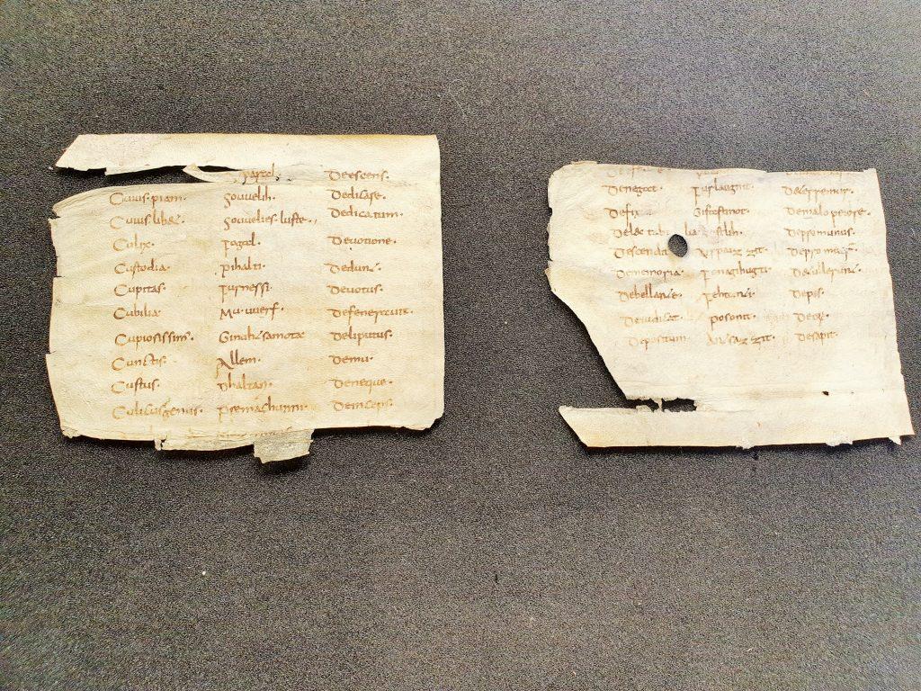 Abrogans, Fragment einer alten Handschrift