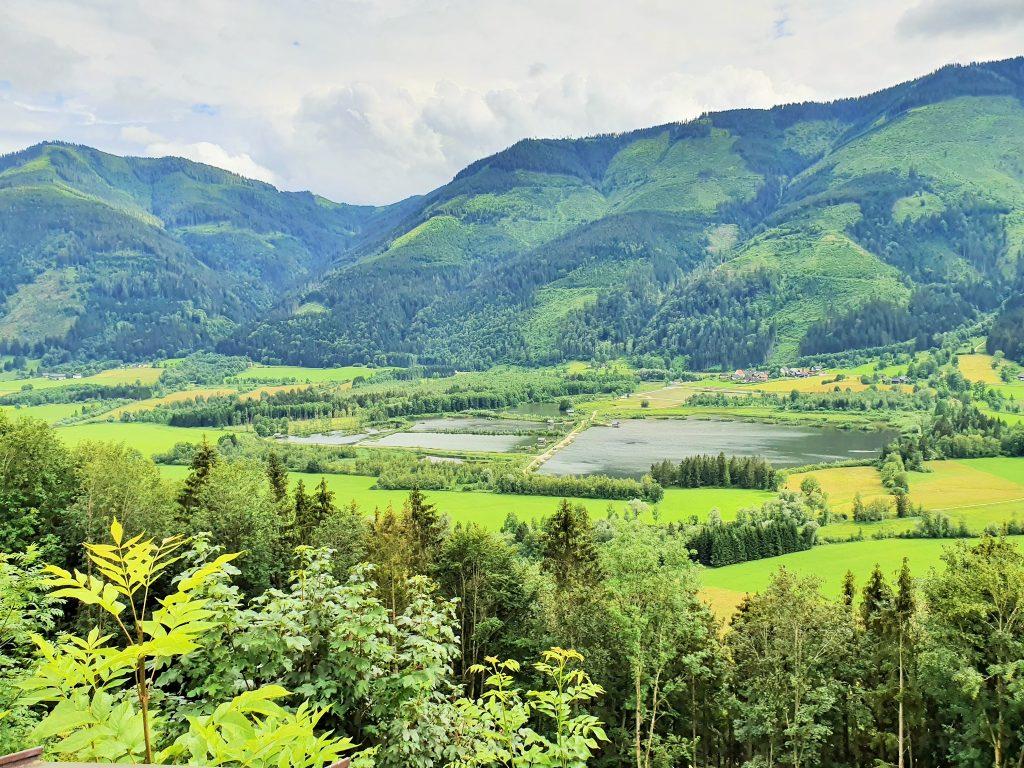 grüne Landschaft des Ennstales