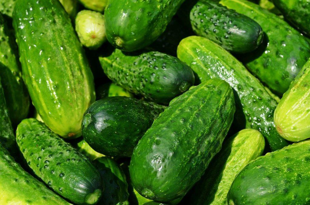 Gurken zum Gemüse einlegen in Essig