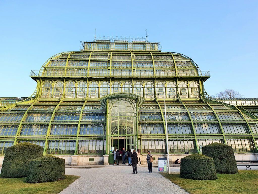 Palmenhaus Schlosspark Schönbrunn in historischem Glashaus