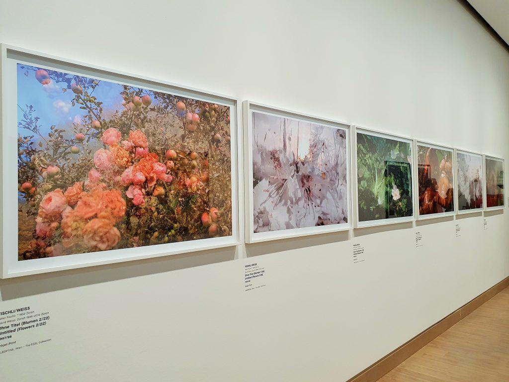Exponate moderner Fotografie in einem Ausstellungsraum