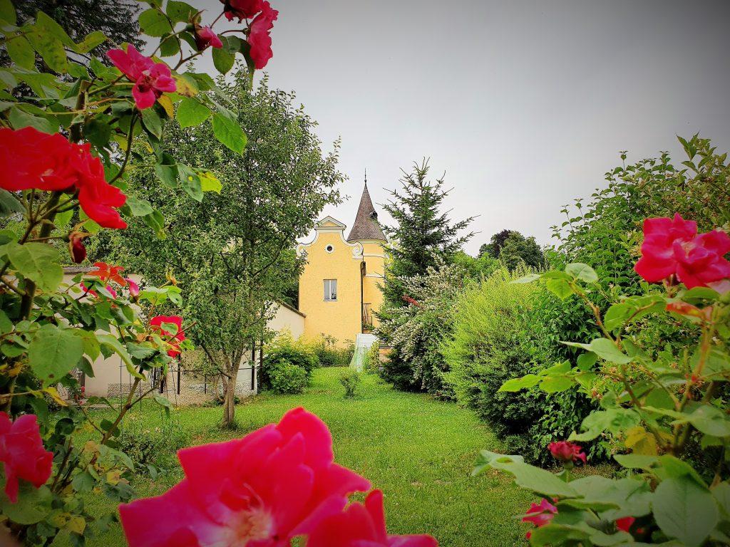 Klosterfasten im Johannes-Schlössl der Pallotiner Salzburg