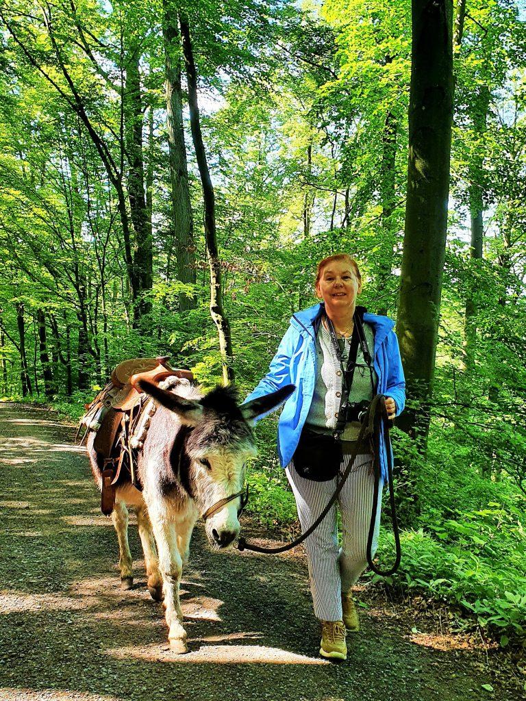 Bloggerin bei einer Eselwanderung durch den Steigerwald