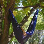 Müßiggang in der Hängematte unter Bäumen