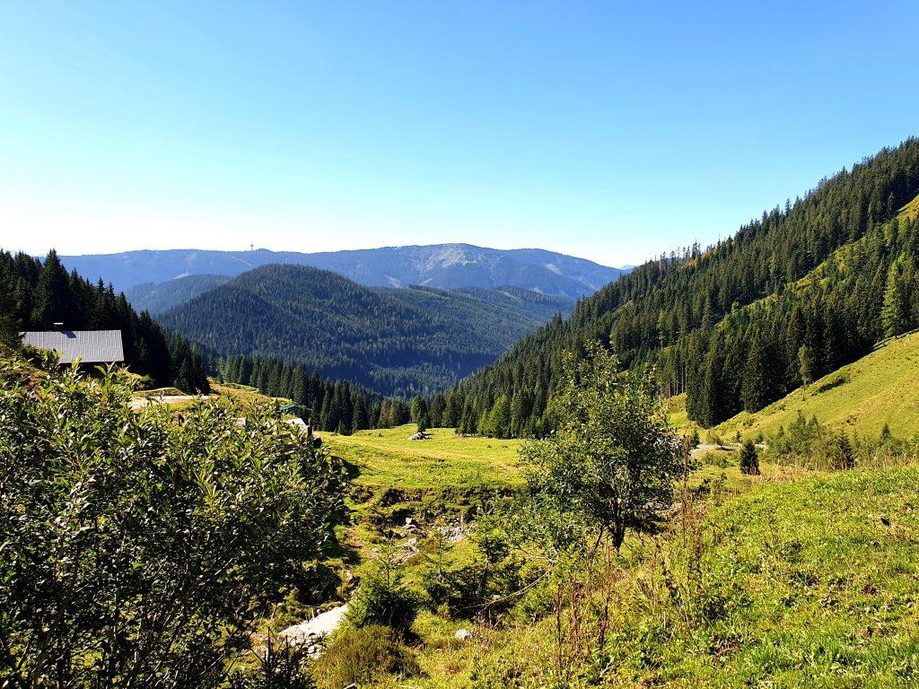 Ausblick von der Aualm in die Bergwelt SalzburgerLand