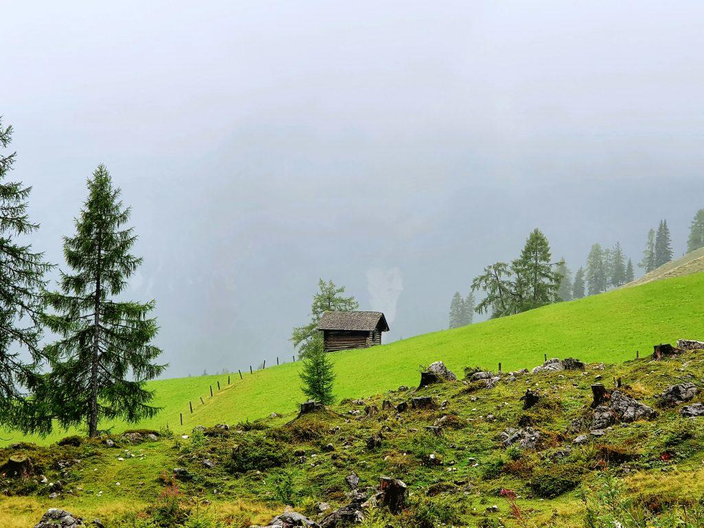 Alm mit kleiner Holzhütte im Nebel