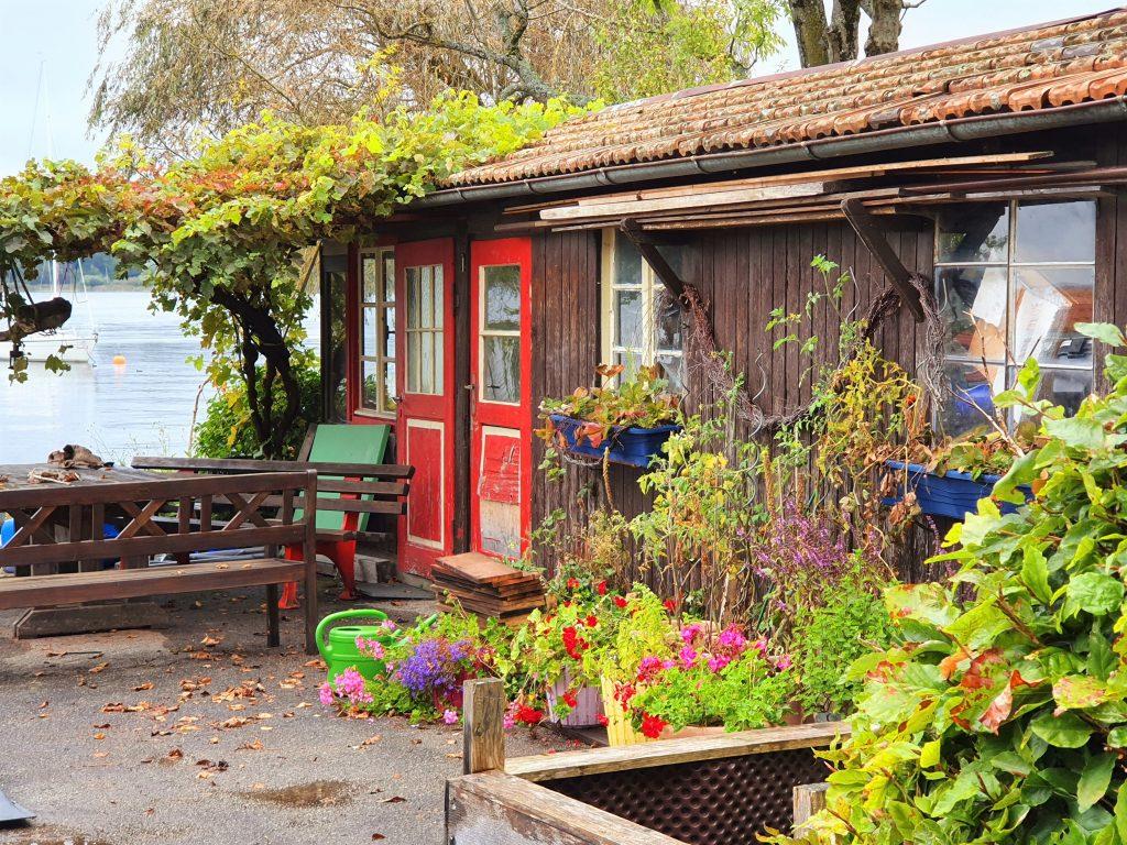 Holzhütte umgeben von Grünpflanzen