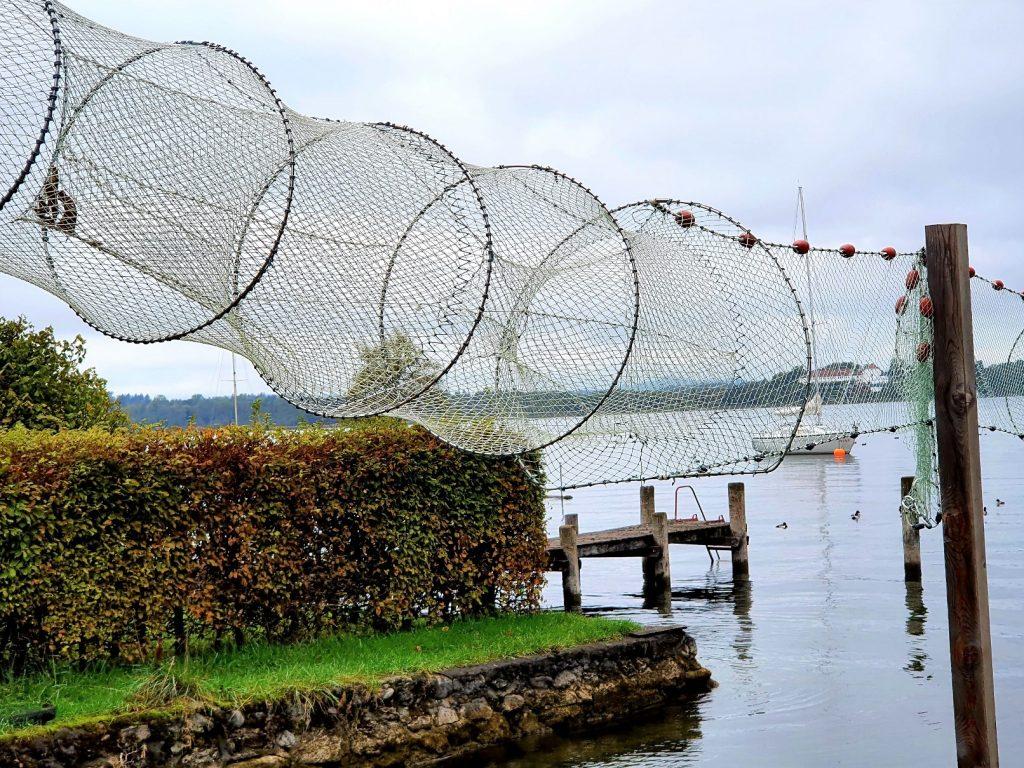 Fischreusen am Seeufer
